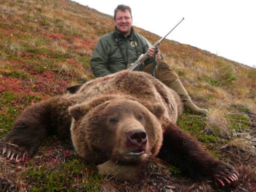 Alaska Grizzly Bear Hunts